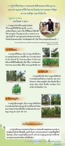 ปลูกป่า 3 อย่าง ประโยชน์ 4 อย่าง