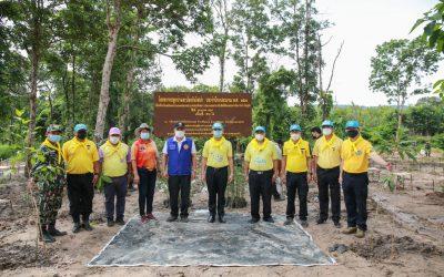 วันที่ 22 กรกฎาคม 2564 เวลา 08.30 น. สำนักบริหารพื้นที่อนุรักษ์ที่ 9 (อุบลราชธานี) จัดกิจกรรมปลูกป่า ตามโครงการปลูกป่าและป้องกันไฟป่า กรมอุทยานแห่งชาติ สัตว์ป่า และพันธุ์พืช เพื่อเฉลิมพระเกียรติพระบาทสมเด็จพระเจ้าอยู่หัว เนื่องในโอกาสมหามงคลเฉลิมพระชนพรรษา 69 พรรษา 28 กรกฎาคม 2564